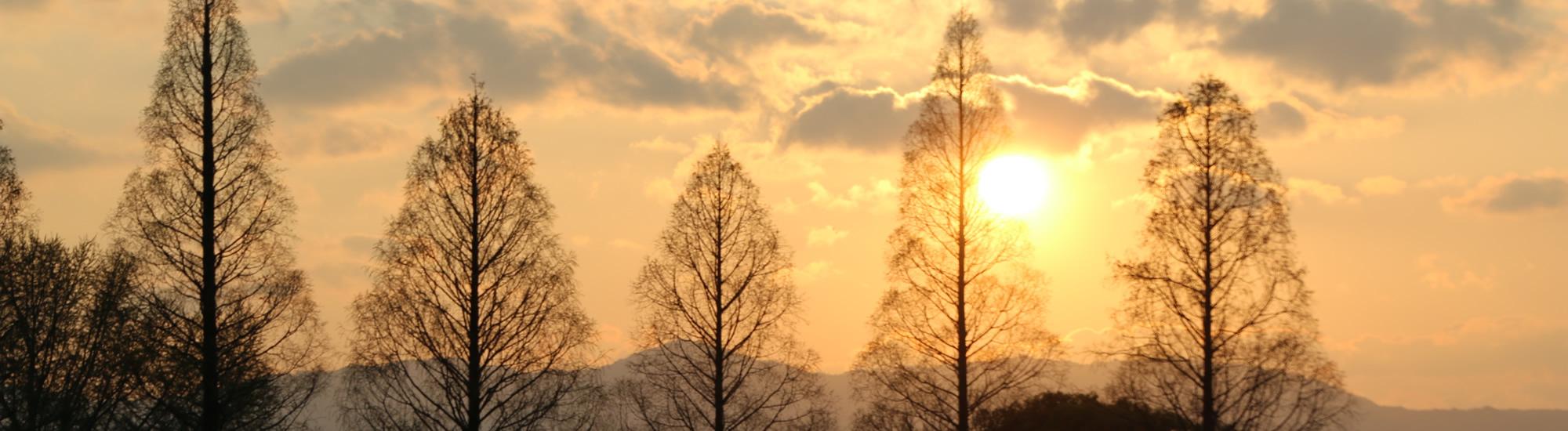 京都教育大学 12月