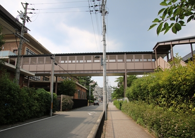 tokushu320170718_R.JPG